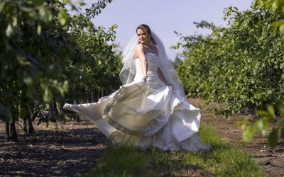 Styles of wedding photography